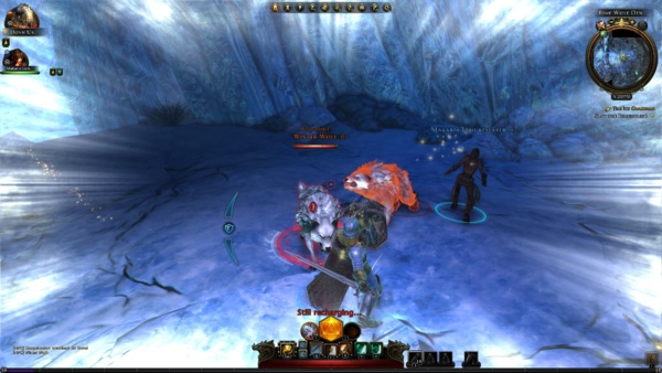Онлайн игра Neverwinter - скриншот 2